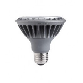 Philips 410118 LED Flood Light