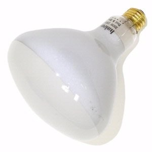 Halco 104035 - R40FL300/HG Reflector Flood Light Bulb