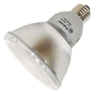 Halco 46002 CFL Flood Light