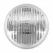 GE 16541 Incandescent Flood Light Bulb